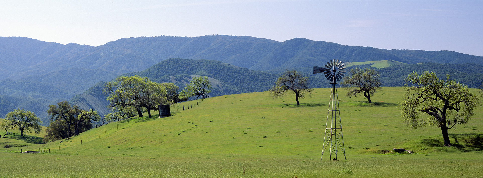 Windmill and oak trees in spring along Route 154, Santa Ynez, Ca
